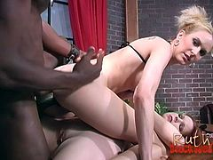 Enticing cowgirls in sexy bra screaming as the big black cock stretches their pussy