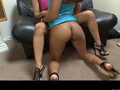 Pair of lesbian Latinas are ready to suck the dick of their friend
