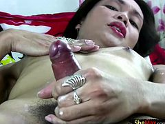 Super hot PI ladyboy Cherry loves the feel of big cock in her ass so much that she carries several dildos in her purse. She spends all her spare time training her tight asshole for her western...