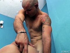I have hairy Latin boy Maximo in front of my camera again, and this time Ive brought big Oscar in to bareback fuck him. It seemed like the two would never get tired of sucking dick, but I knew Maximo was not going to let this video finish without riding Oscars big cock. Eventually Oscar shoves it in and Maximo gets a barebacking he wont soon forget. There were no complaints from Oscar, as hes always ready to fuck an experienced bottom.