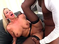 Visit official Lexington Steele's HomepageBlonde beauty removes clothes to pose only in her black stockings, all in the same time with having a black male banging her ass while at work
