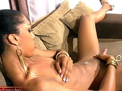 With her long dark hair and long slender body, Stefany Perrony is a lovely ebony shemale that can really steam up the camera. She is dolled up in her a short gold dress that looks arousing against...