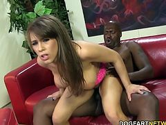 Natasha had to feel what so many other black cock sluts have felt: Lexington Steele's huge black cock. Natasha gets on her knees and spreads her milky thighs apart so Lex can pound that pussy from behind...