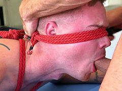 Kyler Ash was tied to a snooker table in the spread eagle position and he was blindfolded. Jessie Colter firmly held his submissive sex slave's face and brutally face fucked him, until he cum. He also whipped, tickle tortured and dominated his submissive gay partner throughout the session.
