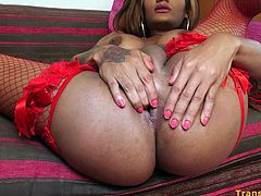 Brown-skinned tiny transsexual Melony Conty plays with her big dick solo. Melony wears a sexy set of red lingerie with matching fishnet stockings and high heels. Melony looks so sexy in this outfit with her erected dick and boobs outside.