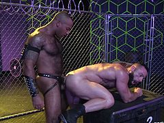 Sexy stud Eddy is bent over and getting his tight asshole plowed by by his hunky lover. He gets deep inside that tight bum and makes his boyfriend rock hard, as his ass cheeks clench around that massive cock. Ebony stud Daymin is going to ejaculate in that tight bumhole.