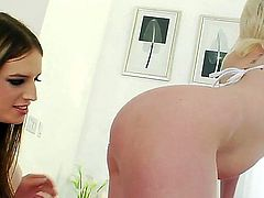 Two girls one she male in this lovely threesome. Another one of those hd movies that make your dick pulsate when you see lovely babes fucked by a tranny dick