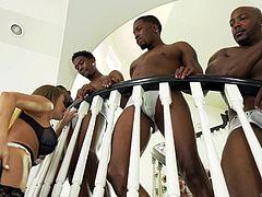 She is a horny blonde beauty who needs to have big black cocks shoved into her tight vagina. She gives each hung stud a nice blowjob, before taking those dicks deep in her pussyhole. This is a hot interracial gangbang.