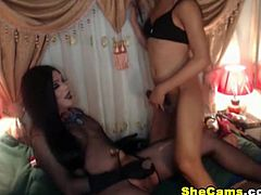Attractive and appealing shemales sizzle in this hot webcam show. Together with her friend these horny beings venture into a hot and lustful sexcapade. A good looking tranny gets a nice handjob and blowjob from her friend. One shemale receives a wet blowjob from the other as she gropes his tight cock hard. The good looking shemale loved it so much that his big cock is being sucked. This playful couple gets playful and kinky with one another and they also play with their own hard rods. The sexy brunette tranny deepthroats and almost gags on the dick inside her mouth. This is a blowjob webcam sh