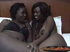 Naughty African lesbians are more than ready to take care of each other in a bedroom. They enjoy using their tongues by licking pussies.