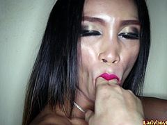 Amateur ladyboy Deedee exposes her boobs, cock and ass, while staying in front of the wall in a cheap hotel room. She сrawls to a cameraman and gives him a POV blowjob. Deedy licks his ass and gives him a frottage pleasure also. At the ending she gets her ass fucked bareback.