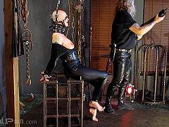 Hey guys, you need to see this! Believe me, this exciting bdsm session with hot, risky babe Abigail Dupree, deserves your attention. She will be whipped and then placed in a bondage cage... Watch breathtaking punishment!