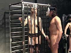 Its too much for her, watching the obedience training that her brunette cellmate is undergoing, her naked body rhythmically bending and thrusting to build the muscles to be the perfect fucking machine. Blondie wants to suck and fuck before her hunger for cum becomes anatomic.