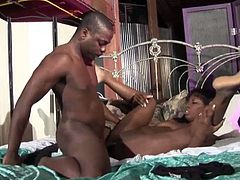 Black whore Lady Armani is having a dirty sex with her sex partner
