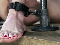 It looks like place where she will fully relax! Well, I'm joking! It looks different, but it will still be possible for Dahlia Sky to get some pleasures here, in this kinky bondage device. Join and enjoy!
