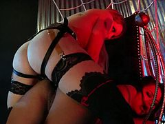 Innocent and curious, Annie Cruz discovers the Queens lair, and entangles herself in the wicked web of lust by twirling her tongue on Aiden Starrs clit. Annie is held fast in the cuffs of Aidens dark web, probed with sex toys until shes begging to be consumed