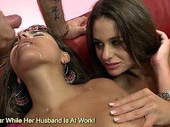 Big breast brunette Cathy Heaven and Valery Summers fucking hard and sharing jizz snack