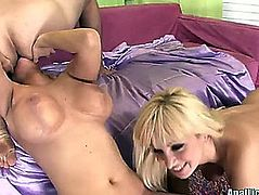 Breasty blondes brooklyn bailey and lea lexis sharing penis in three-some
