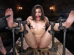 Of course, when you're tied up and clamped down like she is, you'd have no choice but to take what came your way. Her feet take most of the torture, being whacked with a cane. The ball gag muffles her cries mostly as she takes her punishment.