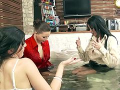 Naughty Anissa Kate and her friends like to please each other