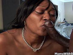 Ebony mama Ms Cleo shakes her sexy fat ass wearing fisnet stockings with her pierced nipples. Likes bouncing her ass up and down as she rides a big black cock. And takes all the cum in the insides of her mouth.
