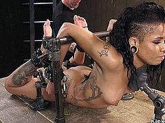 Alt ebony tormented in device bondage