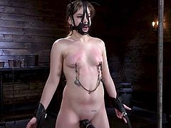 Bobbi Dylan is bound and she's feeling a little shy about this kinky bdsm game, but very soon she forgets about everything. She can only concentrate on the pleasure she's getting in every inch of her throbbing body. She's fucked with dildos and...
