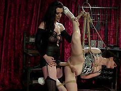 Natalie Mars is bound in ropes, hanging in midair, waiting for what is going to come next. Today, the sexy tranny is in full power of her dominant lover, Cherry Torn, who has already put on a huge strapon and is ready to enter her tight asshole... Join and enjoy!