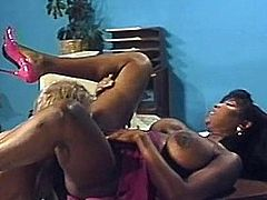 Busty black beauty sucks and fucks an eager cock