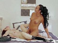 TS Chanel have sex with her lovely girlfriend Violet Monroe
