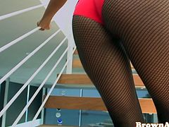 Roundass ebony babe in pantyhose banged doggystyle before blowing cock