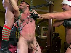 It seems these guys know a lot about entertainment and if you, like them, love gay bondage and various kinky bdsm devices, then I recommend you not to miss this amazing gay threesome. Join and have fun!